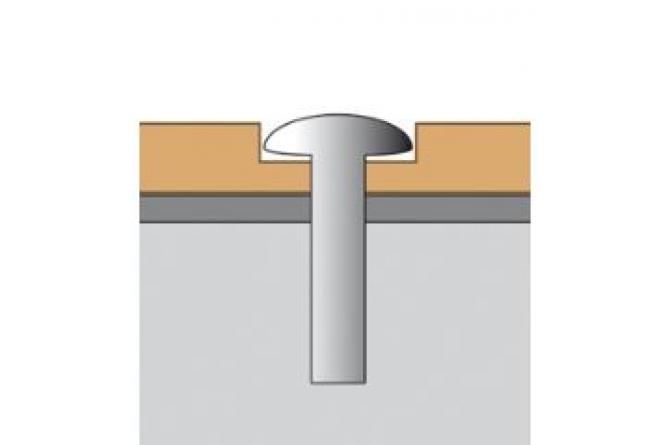 TORX schroeven edelstaal #1 | Bevestigingsmateriaal spiegels | Groven Store Safety